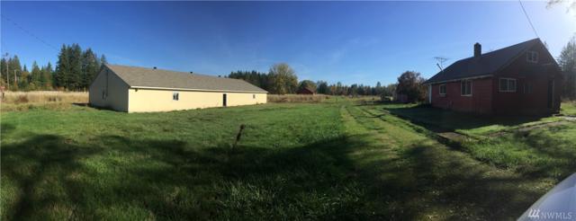 123 Hopp Rd, Toledo, WA 98591 (#1209119) :: Ben Kinney Real Estate Team
