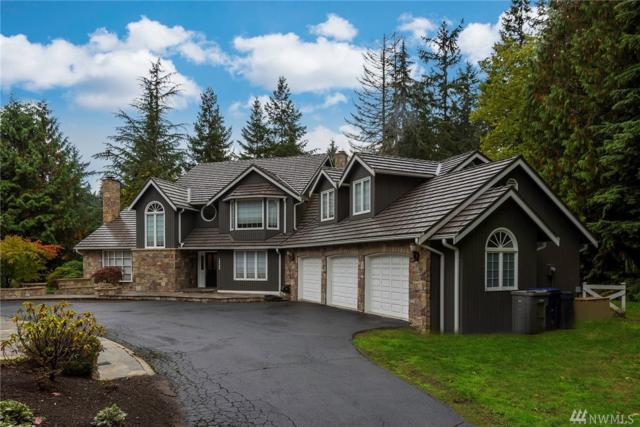 15309 185th Ave NE, Woodinville, WA 98072 (#1209236) :: Ben Kinney Real Estate Team