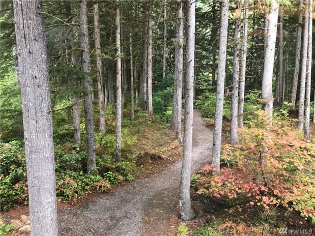 10500 Mt. Baker Highway #402, Glacier, WA 98244 (#1209535) :: Keller Williams - Shook Home Group