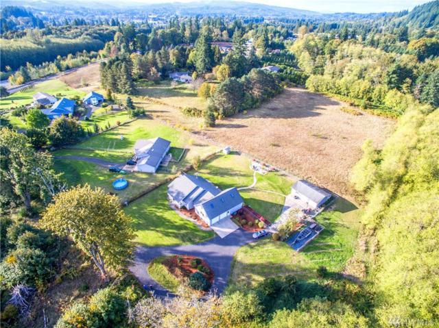 438 Bond Rd, Castle Rock, WA 98611 (#1209805) :: Ben Kinney Real Estate Team
