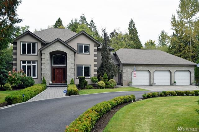 9935 Peace Rd, Blaine, WA 98230 (#1210031) :: Ben Kinney Real Estate Team