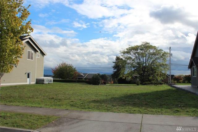 1312 Larkspur St, Lynden, WA 98264 (#1210090) :: Ben Kinney Real Estate Team