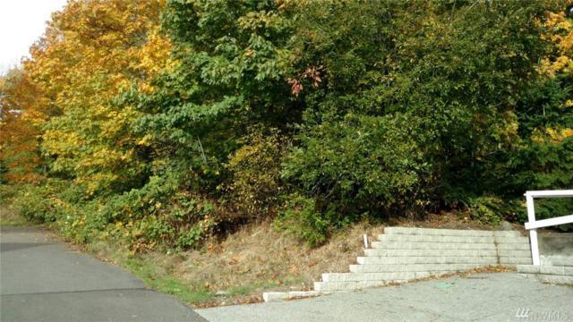 0 Fern St, Suquamish, WA 98392 (#1210355) :: Mike & Sandi Nelson Real Estate