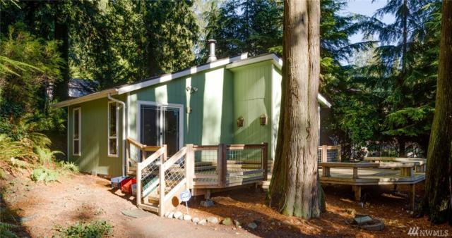 3036 Mink Lane, Sedro Woolley, WA 98284 (#1210601) :: Ben Kinney Real Estate Team