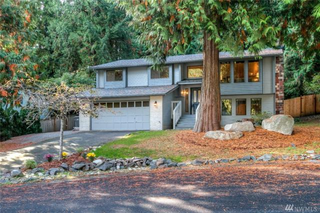 16315 197th Ave NE, Woodinville, WA 98077 (#1212323) :: Ben Kinney Real Estate Team