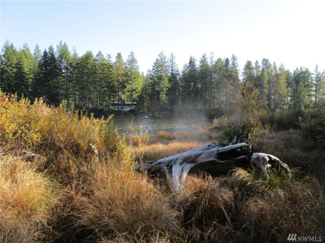 0-Lot 1 E Coon Dr N, Belfair, WA 98528 (#1213089) :: Kimberly Gartland Group