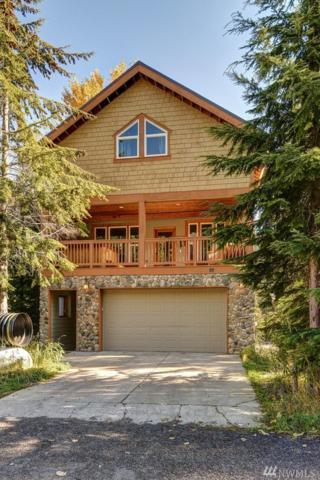 141 Kearny Dr, Snoqualmie Pass, WA 98068 (#1214075) :: Ben Kinney Real Estate Team