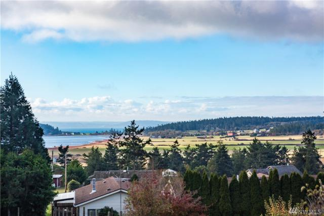 515 Olympic View Dr, Coupeville, WA 98239 (#1214124) :: The Craig McKenzie Team