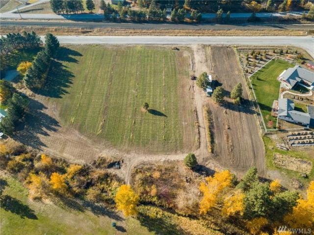 11393 Chumstick Hwy, Leavenworth, WA 98826 (#1215316) :: Nick McLean Real Estate Group