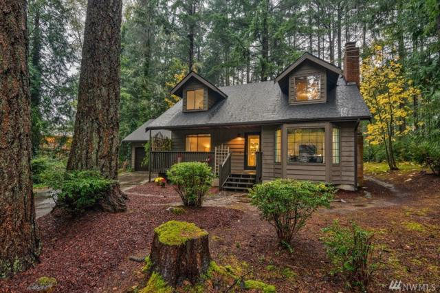 5419 143rd St Ct NW, Gig Harbor, WA 98332 (#1215448) :: Real Estate Solutions Group