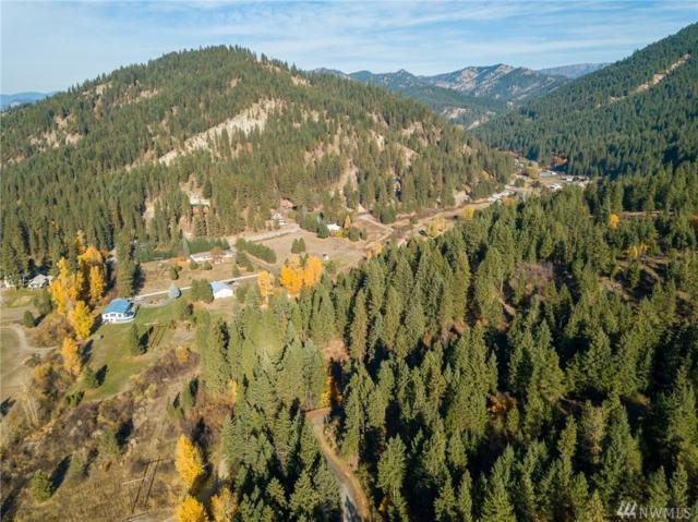 11645 Eagle Creek Rd, Leavenworth, WA 98826 (#1215459) :: Nick McLean Real Estate Group