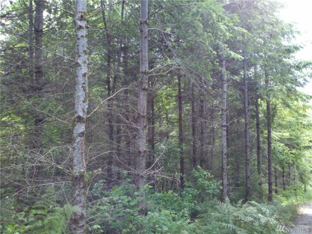 1-XXX SE Green River Gorge Rd, Black Diamond, WA 98010 (#1215883) :: Ben Kinney Real Estate Team