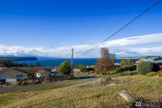34-Lot S Rhododendron, Port Townsend, WA 98368 (#1217517) :: The DiBello Real Estate Group