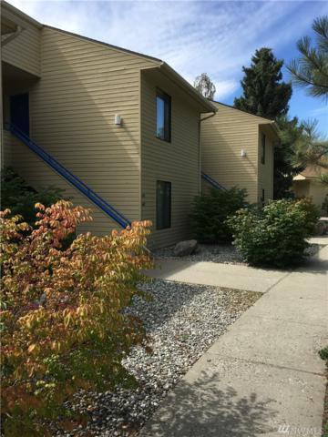 1 Nekquelekin 447-C, Manson, WA 98831 (#1217928) :: Nick McLean Real Estate Group