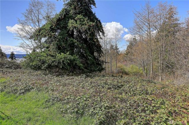 0-Lot 11 Westmoor Place, Camano Island, WA 98282 (#1218067) :: The Craig McKenzie Team