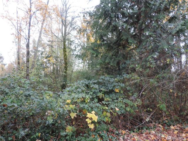 0 S Patterson St, Tacoma, WA 98444 (#1218764) :: Ben Kinney Real Estate Team
