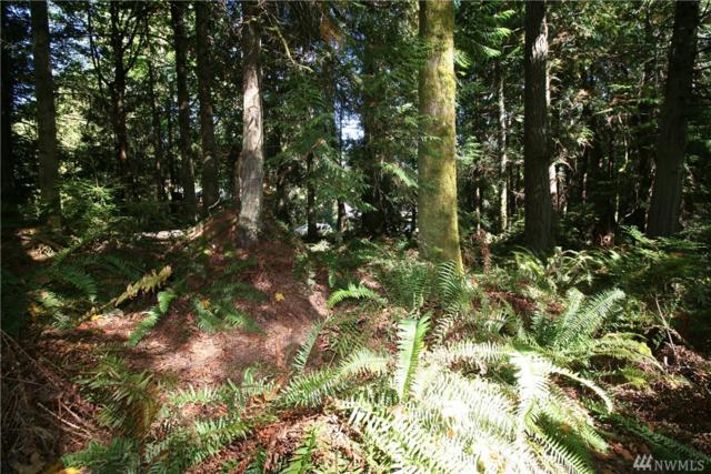 9999-Lot 89 Goliah Lane, Port Ludlow, WA 98365 (#1218839) :: Better Homes and Gardens Real Estate McKenzie Group