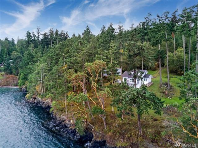 999 Eureka Dr, San Juan Island, WA 98250 (#1219039) :: Homes on the Sound