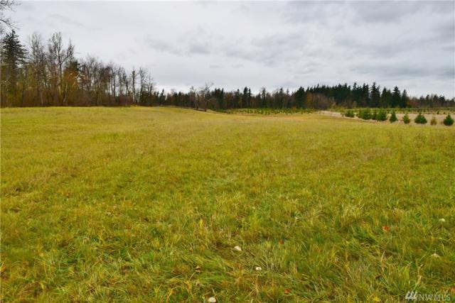 2748-E Badger Rd, Everson, WA 98247 (#1219146) :: Homes on the Sound