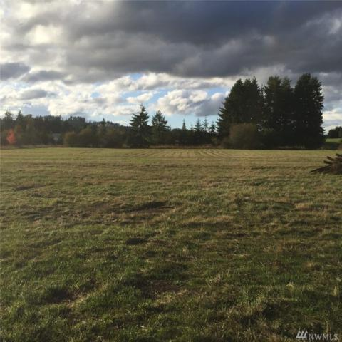 202 Pleasant Valley Rd, Winlock, WA 98596 (#1219296) :: Homes on the Sound