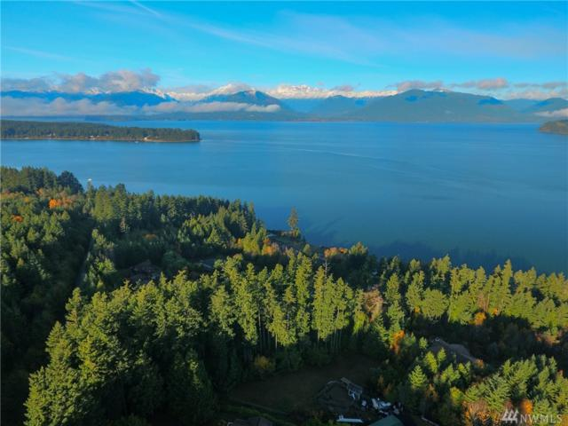0 Seabeck Highway, Seabeck, WA 98380 (#1219411) :: Better Homes and Gardens Real Estate McKenzie Group