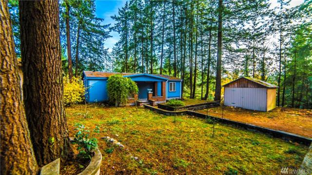 27507 Witte Rd SE, Maple Valley, WA 98038 (#1219544) :: Keller Williams - Shook Home Group