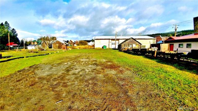 0 W Pennsylvania Ave, Roslyn, WA 98941 (#1219778) :: Homes on the Sound