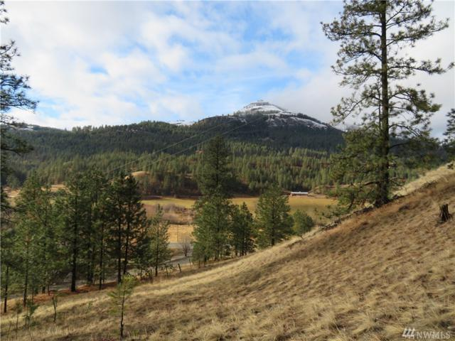 0-Tract 2 Hwy 21 N, Curlew, WA 99118 (#1219798) :: Brandon Nelson Partners