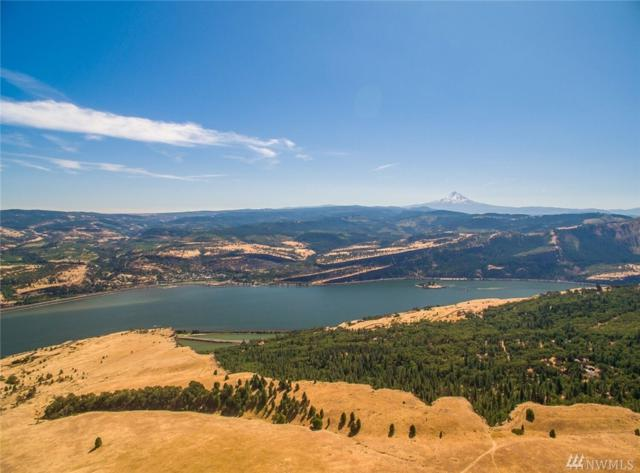 0 Cooke Rd, White Salmon, WA 98672 (#1220216) :: Keller Williams Realty Greater Seattle