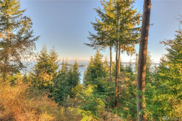 41 Raven Lane, Orcas Island, WA 98245 (#1220822) :: Real Estate Solutions Group