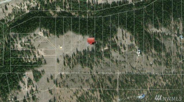 0 Lot 115 Cape Labelle Ranches, Tonasket, WA 98855 (#1221026) :: Tribeca NW Real Estate