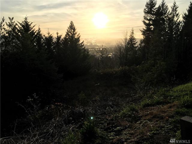 217 Highland Park Dr, Kelso, WA 98626 (#1222548) :: Morris Real Estate Group