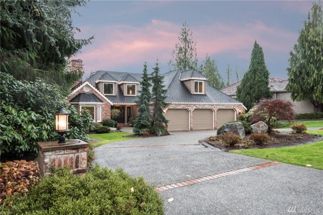 14103 205th Ave NE, Woodinville, WA 98077 (#1222573) :: Pickett Street Properties