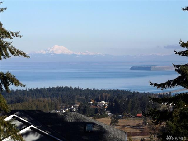 10 Exeter St, Sequim, WA 98382 (#1222958) :: Homes on the Sound