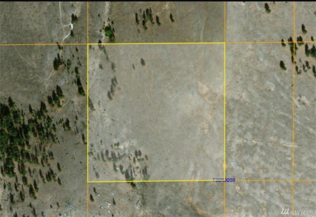 1 One Sky View Dr, Tonasket, WA 98855 (#1222975) :: Brandon Nelson Partners