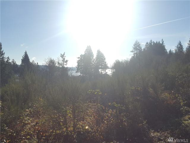0-Lot 7 Wheelwright Rd, Allyn, WA 98524 (#1223111) :: Priority One Realty Inc.