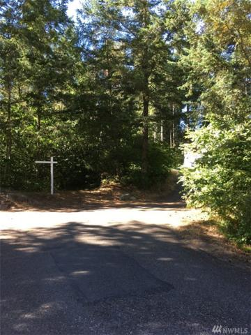 22308 N Clearlake Blvd SE, Yelm, WA 98597 (#1224193) :: NW Home Experts