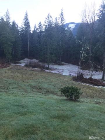 8897 Glacier Ct, Glacier, WA 98244 (#1224613) :: Keller Williams - Shook Home Group