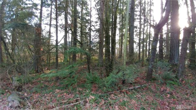 6200 Mount Baker Hwy, Deming, WA 98244 (#1224732) :: Homes on the Sound