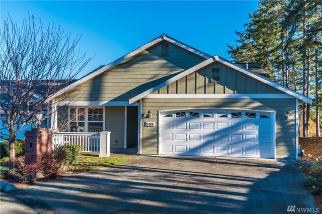 509 NW 12th Lp, Oak Harbor, WA 98277 (#1224993) :: Ben Kinney Real Estate Team