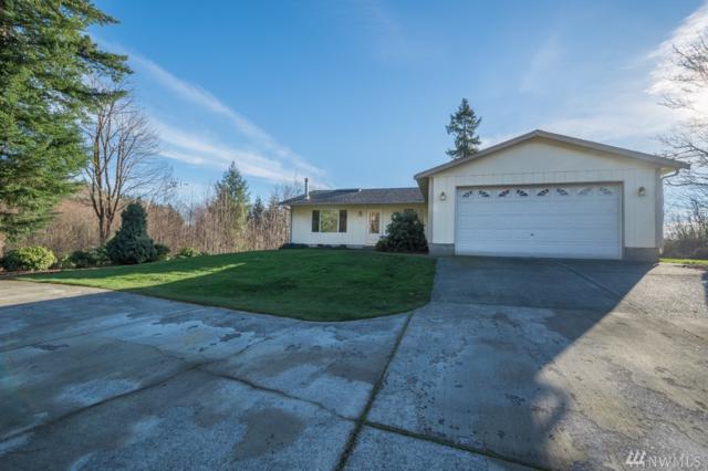 359 Larson Rd, Silver Creek, WA 98585 (#1225904) :: Carroll & Lions