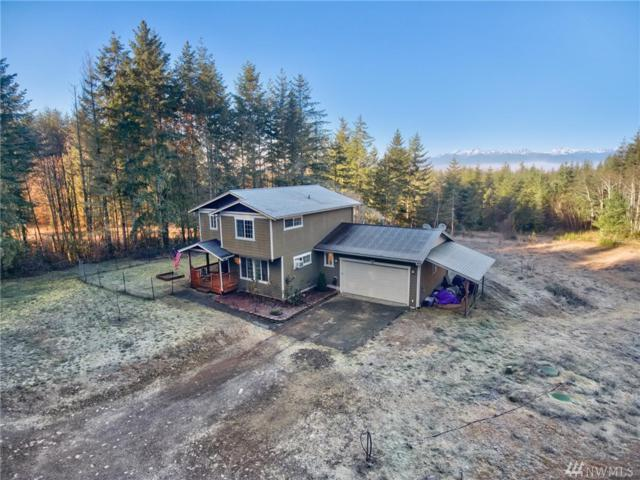 110 E Ethan Lane, Belfair, WA 98528 (#1225952) :: Priority One Realty Inc.
