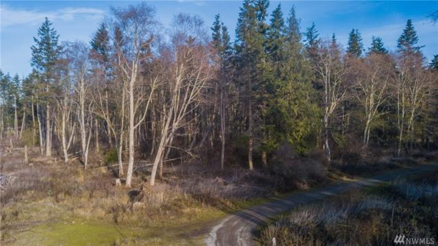 0 Nhn-W Hazzle Ct, Coupeville, WA 98239 (#1226111) :: Homes on the Sound