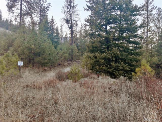 35680 Spruce Grouse Lane N, Davenport, WA 99122 (#1226439) :: Brandon Nelson Partners