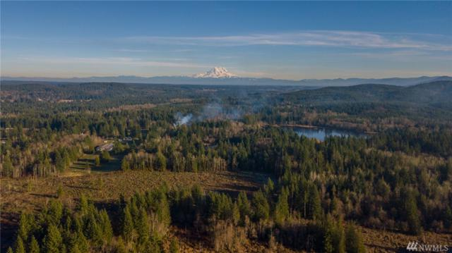 13-XXX Vantine Rd, Tenino, WA 98589 (#1226649) :: Northwest Home Team Realty, LLC
