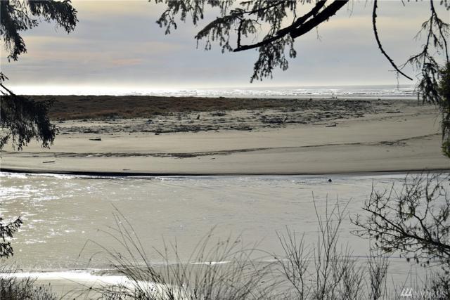 22 Ocean View Lane, Copalis Beach, WA 98535 (#1226855) :: Homes on the Sound