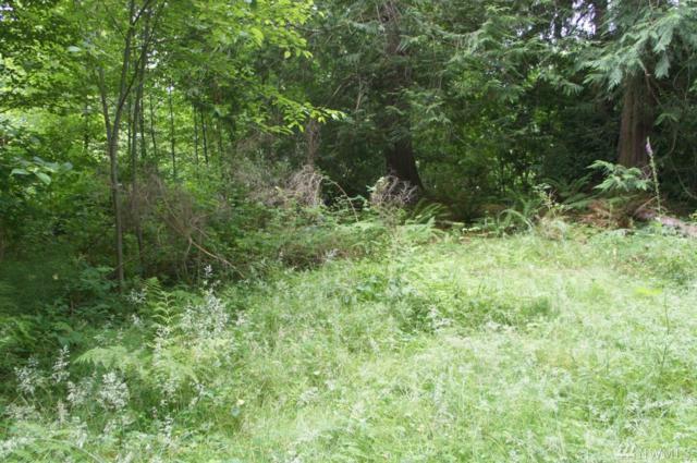 0-NSN Maple Lane, Lilliwaup, WA 98555 (#1230313) :: Tribeca NW Real Estate