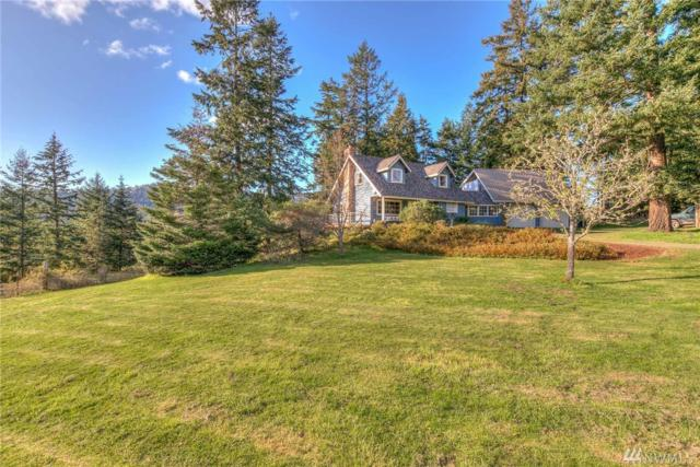 252 Deer Harbor Rd, Orcas Island, WA 98245 (#1230687) :: Better Homes and Gardens Real Estate McKenzie Group