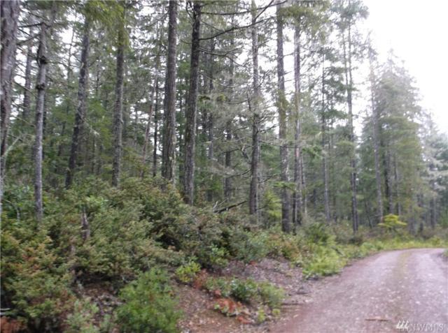 111000 NE D And J Trails  Off Of, Tahuya, WA 98588 (#1231041) :: Homes on the Sound