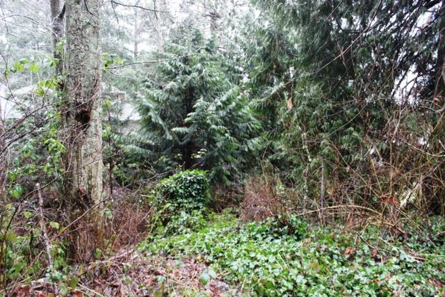 18-XXX 75th Ave NW, Stanwood, WA 98292 (#1232488) :: Real Estate Solutions Group